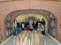 Bralni-izziv-in-Usodno-vino-05
