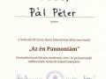 Ponovno-uspesen-nastop-Petra-Pala-12