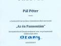 Ponovno-uspesen-nastop-Petra-Pala-13