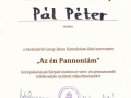 Ponovno-uspesen-nastop-Petra-Pala-14