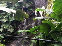 Dan odprtih vrat v podjetju Ocean Orchids