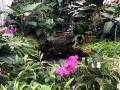 Dan-odprtih-vrat-v-podjetju-Ocean-Orchids-004