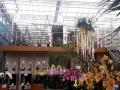 Dan-odprtih-vrat-v-podjetju-Ocean-Orchids-020