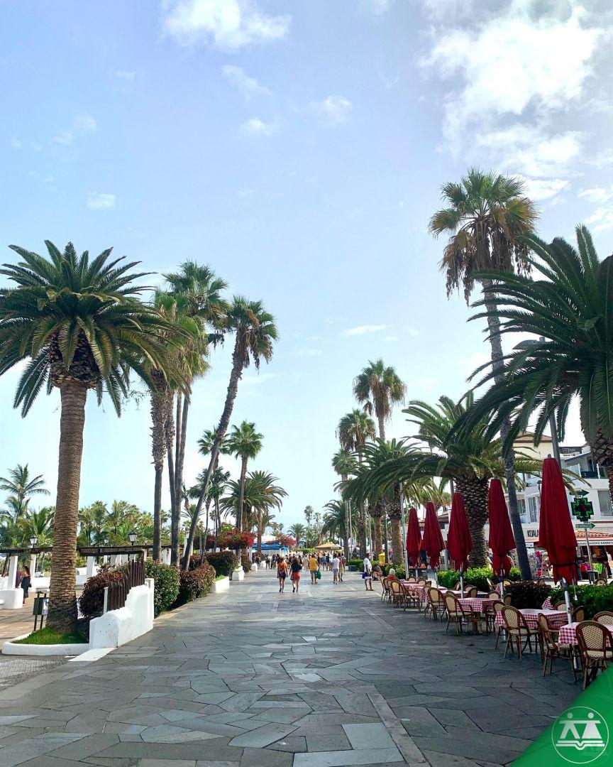 Erasmus-Tenerife-2-teden-031