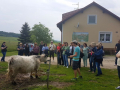 Obisk-Ekoloske-kmetije-Rengeo-007