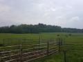 Obisk-Ekoloske-kmetije-Rengeo-009