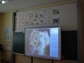 Projektni-dan-Kristalografija-16