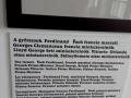 Srecanje-dijakov-iz-Karpatskega-bazena-011