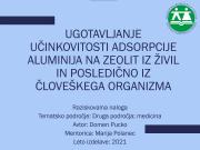 Srecanje-mladih-raziskovalcev-Pomurja-2021-Domen2