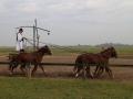 Strokovna-ekskurzija-na-Madzarsko-21