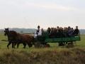 Strokovna-ekskurzija-na-Madzarsko-27