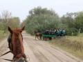 Strokovna-ekskurzija-na-Madzarsko-28