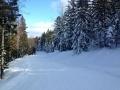 Zimski-sportni-dan-17.jpg