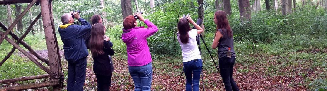 Opazovanje ptic v Murski šumi in njeni okolici